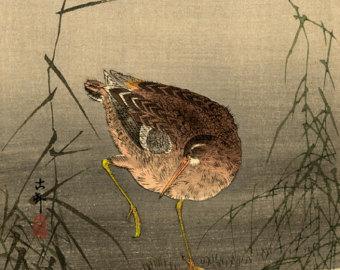Snipe - Japanese Art
