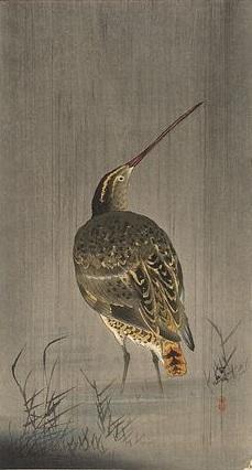 Snipe - Japanese Print